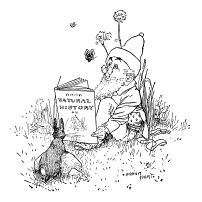 The Book Gnome, a site for book reviews and reading ideas for those who love the classics